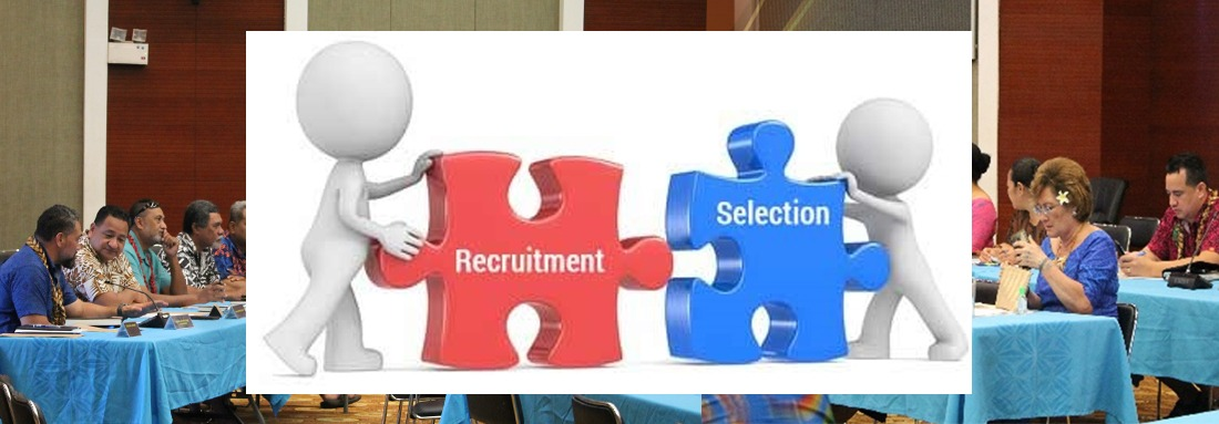 Additional amendments to the Recruitment & Selection Manual & process for Senior Executives