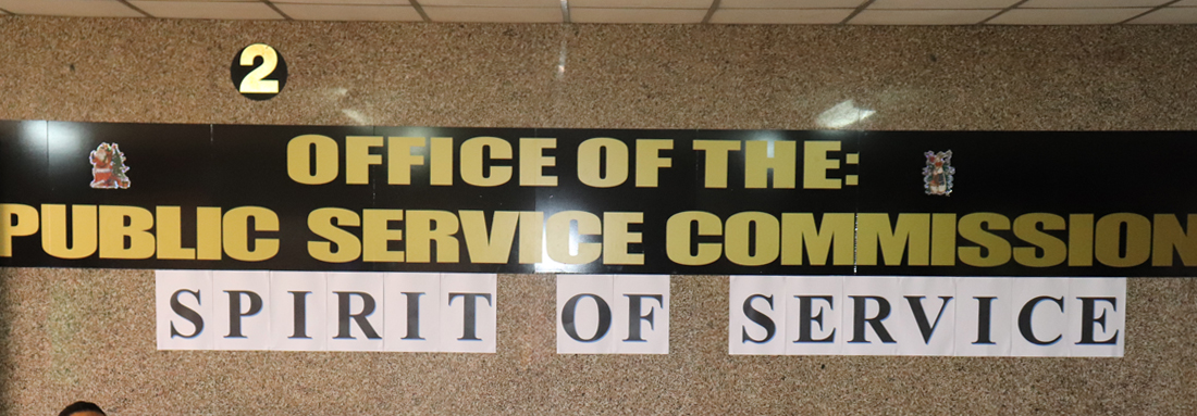 """SPIRIT OF SERVICE"" theme for Public Service Day 2020"